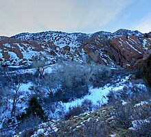 Snowy Red Rocks Twilight by Michael Kirsh