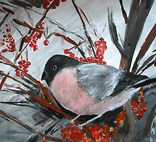 Bullfinch - Wall Art by JamesPeart