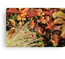 Autumn Crabapples & Tall Grass In The Wind Canvas Print