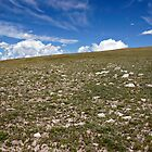 Rocky Mountain National Park Tundra Upslope by Michael Kirsh
