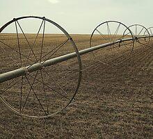 Colorado Irrigation by Michael Kannard