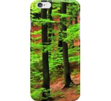 Forest 37 iPhone Case/Skin