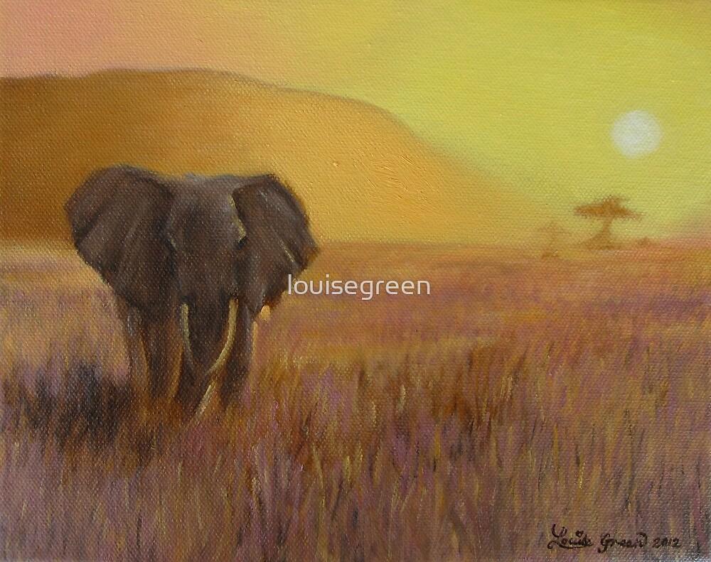 Savannah Sunset by louisegreen