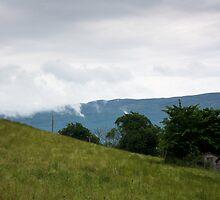 Cabin in Clouds by Kaye Stewart