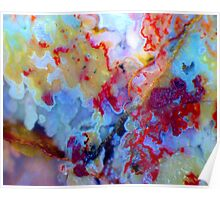 Frilly (Plume Agate) Poster