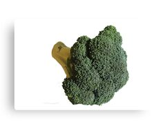 Broccoli II Canvas Print