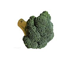 Broccoli II Photographic Print