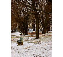 Bench in the Snow Photographic Print