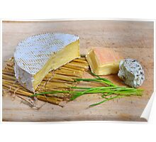 Assortment of French cheese Poster