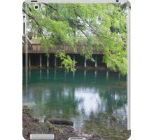 Branford Springs iPad Case/Skin