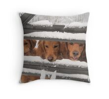 Trio Of Goofy Golden Retrievers Throw Pillow