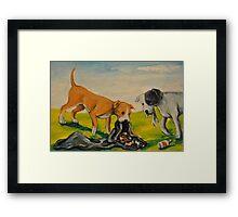 Careless Pit Bulls Dogs! Framed Print
