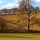 Autumnal colours at Thixen Dale by redown