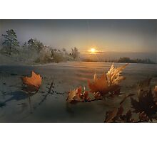 Winter Sun Photographic Print