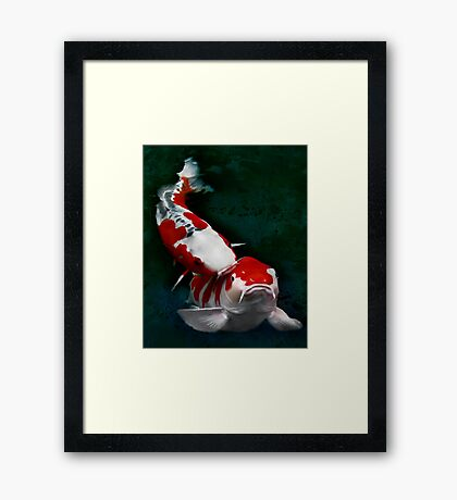 Koi fish (kissing) Framed Print