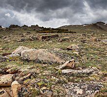 Rocky Tundra and Clouds by Michael Kirsh