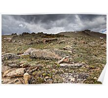 Rocky Tundra and Clouds Poster