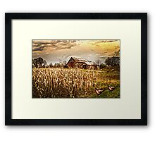 PHEASANTS HEADING FOR CORN PATCH Framed Print