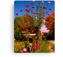 RURAL FREE DELIVERY ADVANTAGE OF COUNTRY LIVING Canvas Print