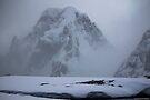 Antarctica 004 by Karl David Hill