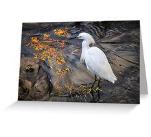 White Crane Bird Greeting Card