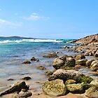 Port Stephens by LibbyWatkins