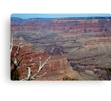 Grand Canyon Gorges Canvas Print