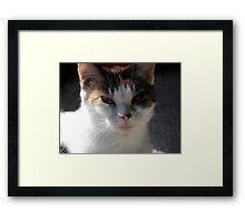 Miss Beautiful Framed Print