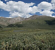 Guanella Pass Mt Bierstadt by Michael Kirsh