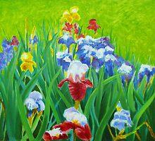 Irises on the West Lawn of Melbourne's Botanic Gardens (2) by Dai Wynn