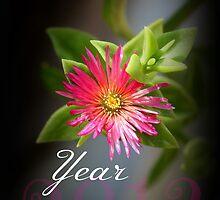Happy New Year - 2013 by cathywillett