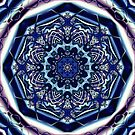 Double Spiral Mirrored Fractal by Hugh Fathers