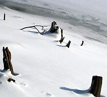 Winter shore by Ron Russell