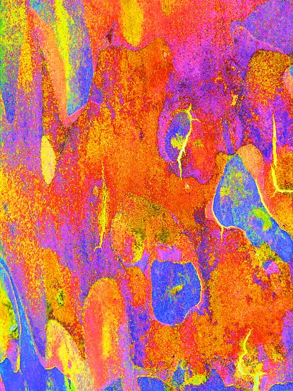 Summer Eucalypt Abstract 21 by Margaret Saheed