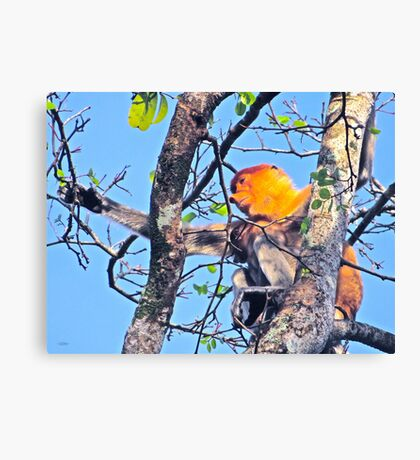 SPARSE SUPPORT Canvas Print