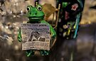 Froggy Reads the Wall Street Journal by Nevermind the Camera Photography