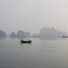 Ha Long Bay Vietnam by Julie Sherlock