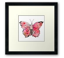 Watercolor Butterfly Framed Print