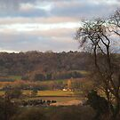 Valley View Winter by Caroline Anderson
