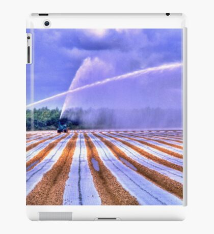 Irrigation Colors iPad Case/Skin