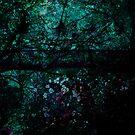 Dark Woods... by Frederick James Norman