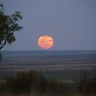 Outback moon rise by Gmac7