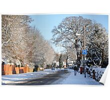 Village in the snow Poster