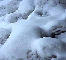 Icy seaside. I by Bluesrose