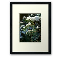 The first snow of winter Framed Print
