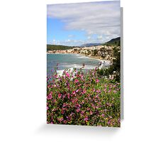 Shoreline from hill Greeting Card