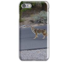 Healthy Coyote iPhone Case/Skin