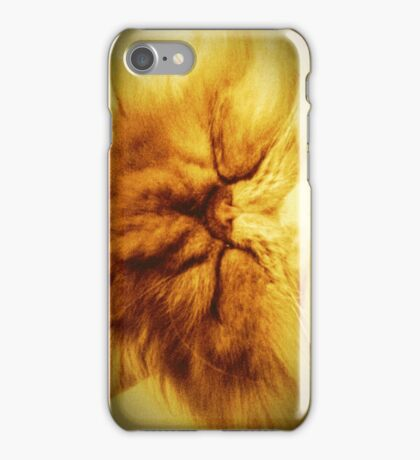 Bunker the Cat iPhone and iPod Cases iPhone Case/Skin