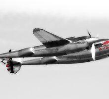 Lockheed P-38L Lightning Collection by Nigel Bangert