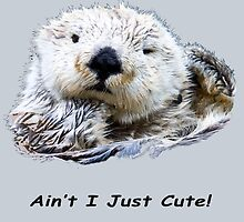 Ain't I Just Cute! Otter by Dave  Knowles